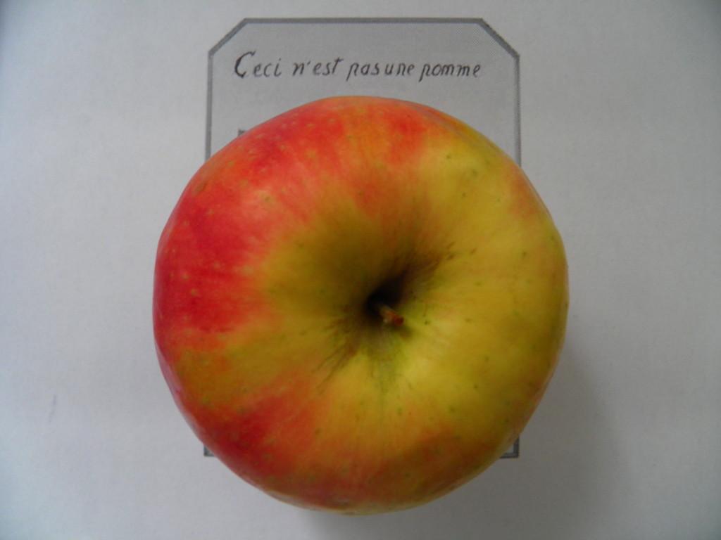 Hendrik Jackson / Das Unvergleichliche von Äpfeln und Birnen
