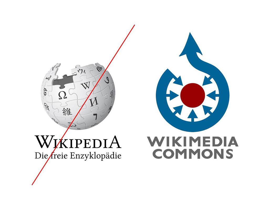Kopp, Axel / Penisse auf Wikipedia