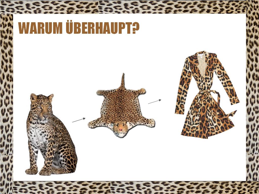 Andreas Schulte / Über das Leopardenmuster