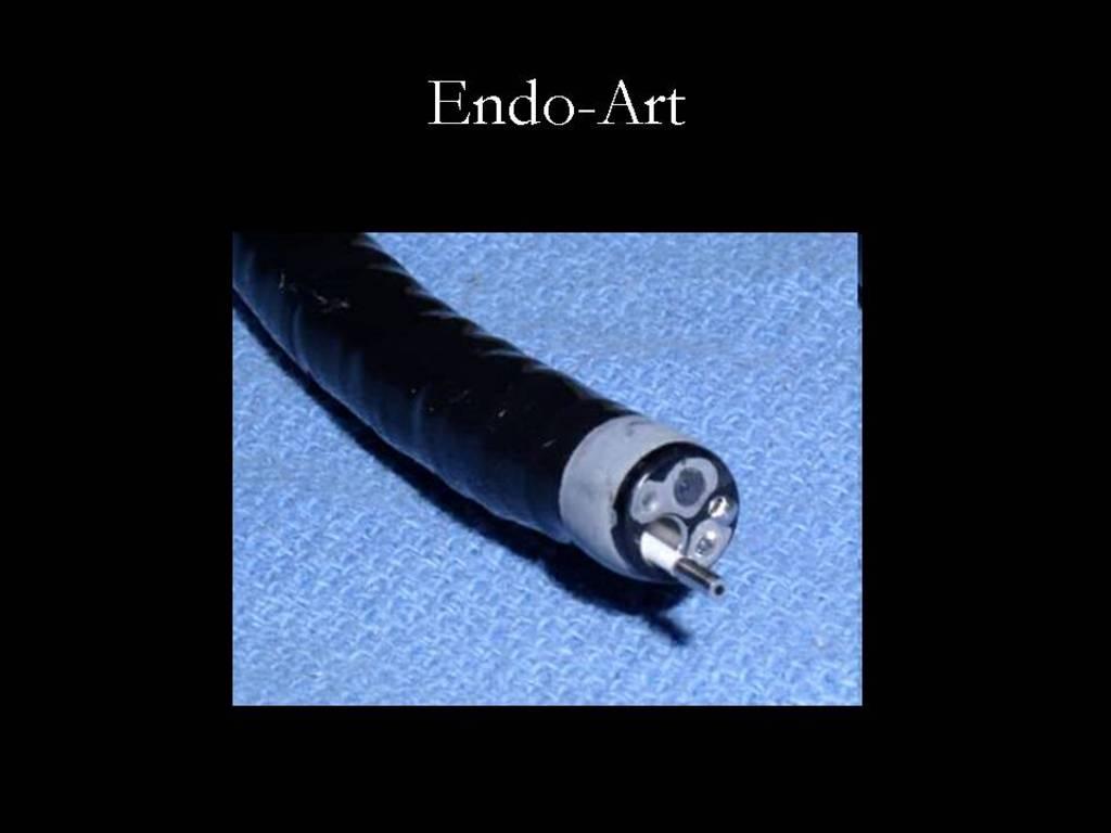 Prof. Klaus Schlottmann / Endo-Art