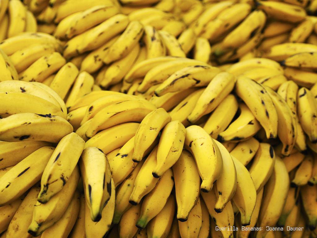 Joanna Dauner / Guerrilla Bananas