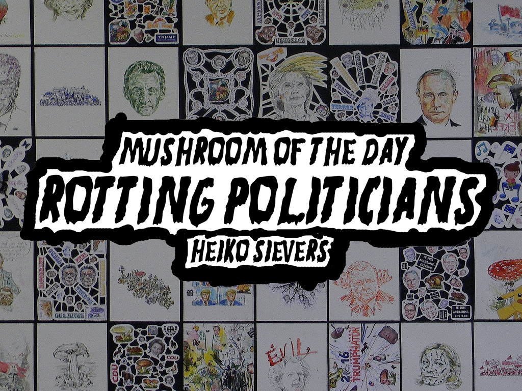 Heiko Sievers / Rotten Politicians